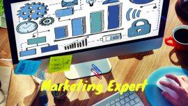 Marketing expert steeve hamblin